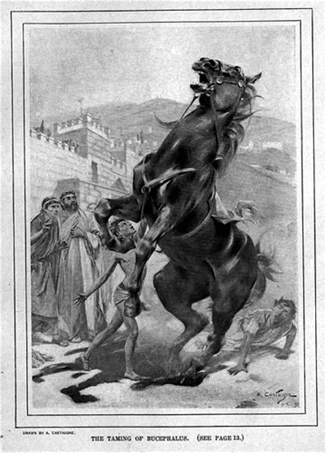 Raw Moments in Myth and History - A Boy and his Warhorse
